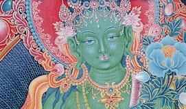 Tara event